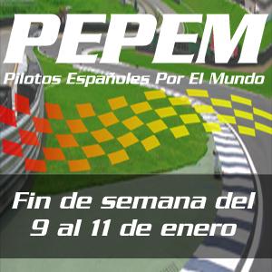 Blog PEPEM - Sus actuaciones - PEPEM 2014-01-11 (Logo)